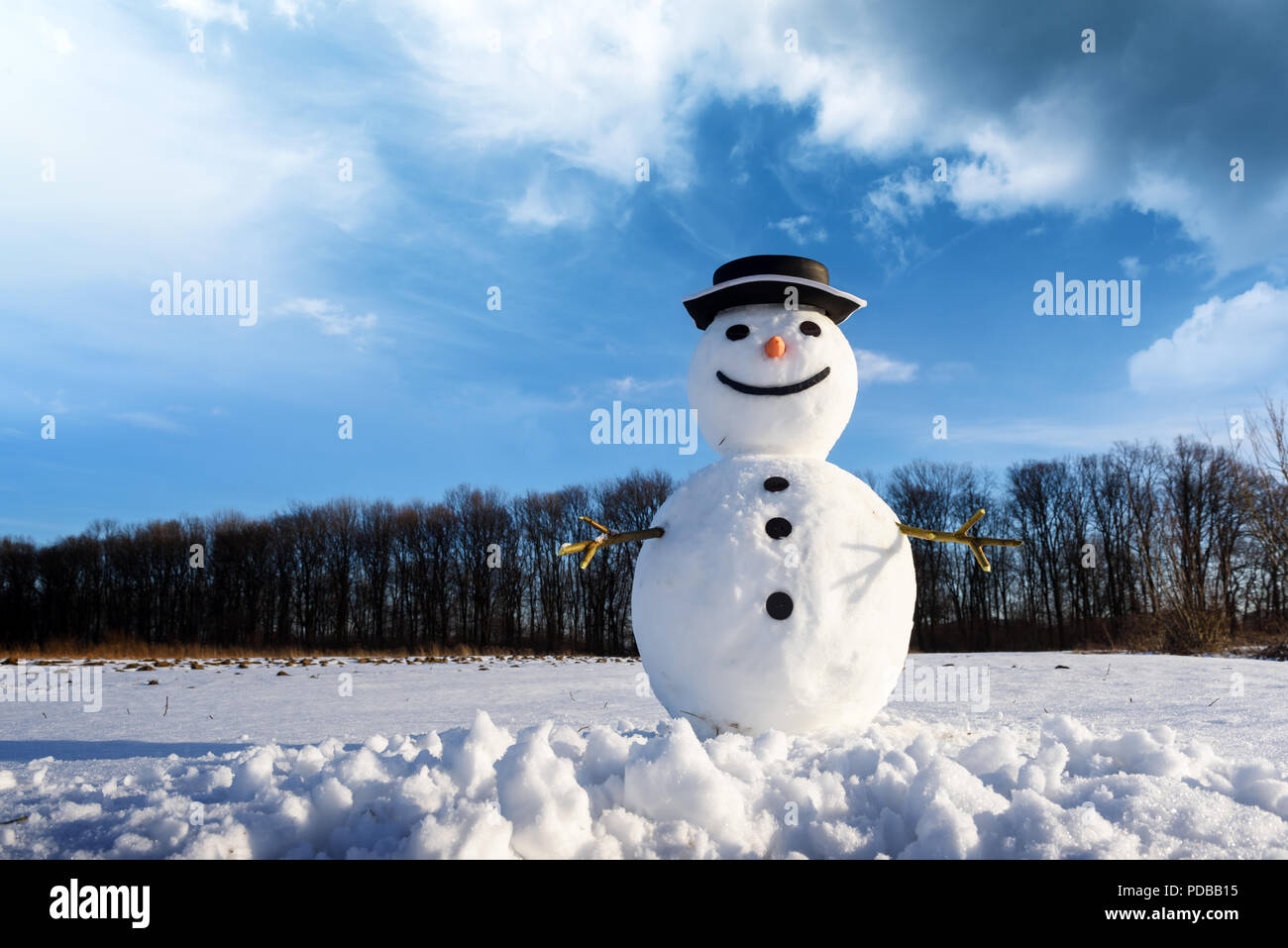 Funny snowman in black hat - Stock Image