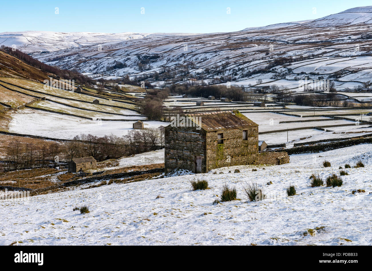 The barns at Thwaite near Muker in Swaledale - Stock Image