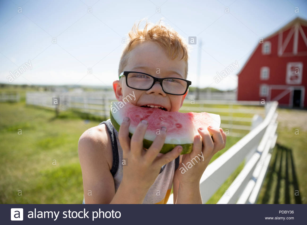 Portrait cute boy eating watermelon on sunny rural farm fence - Stock Image