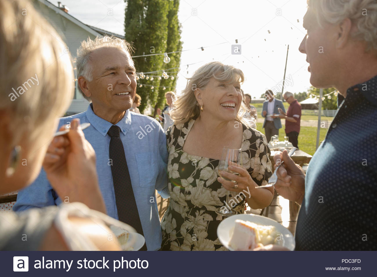 Friends celebrating, eating cake at garden party - Stock Image