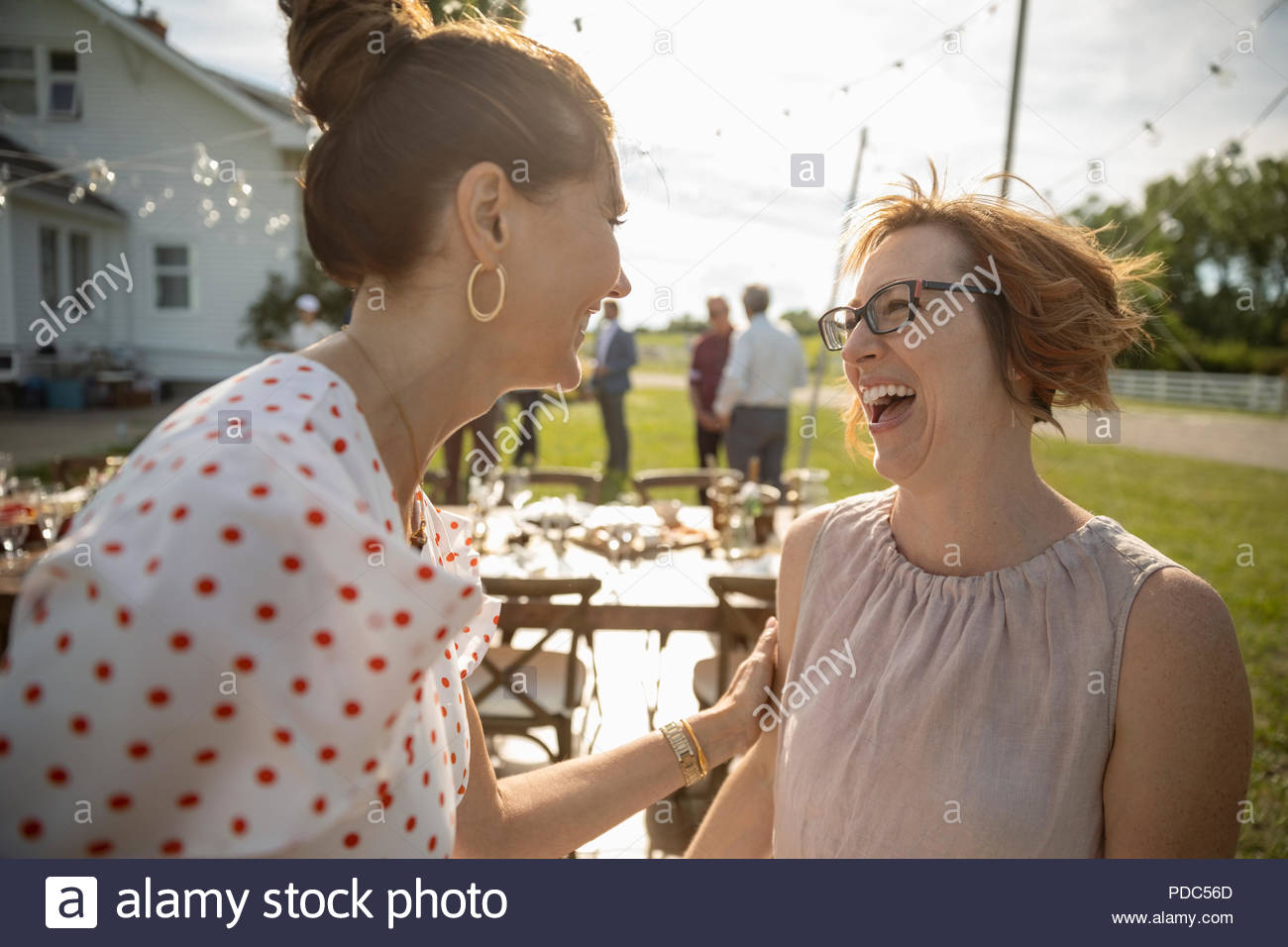 Women friends talking and laughing at wedding reception in sunny rural garden - Stock Image