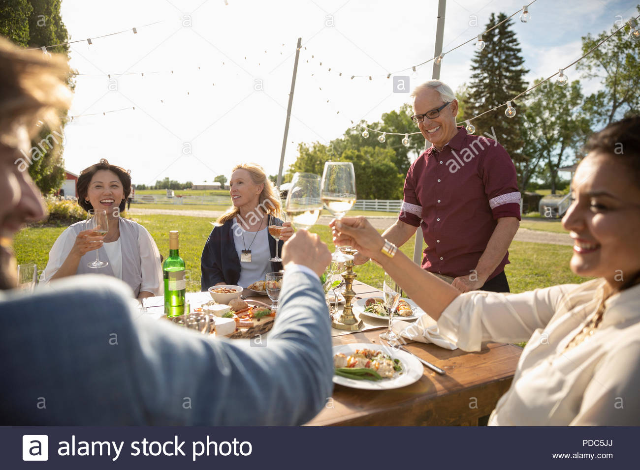 Friends celebrating, toasting wine glasses at sunny garden party table - Stock Image