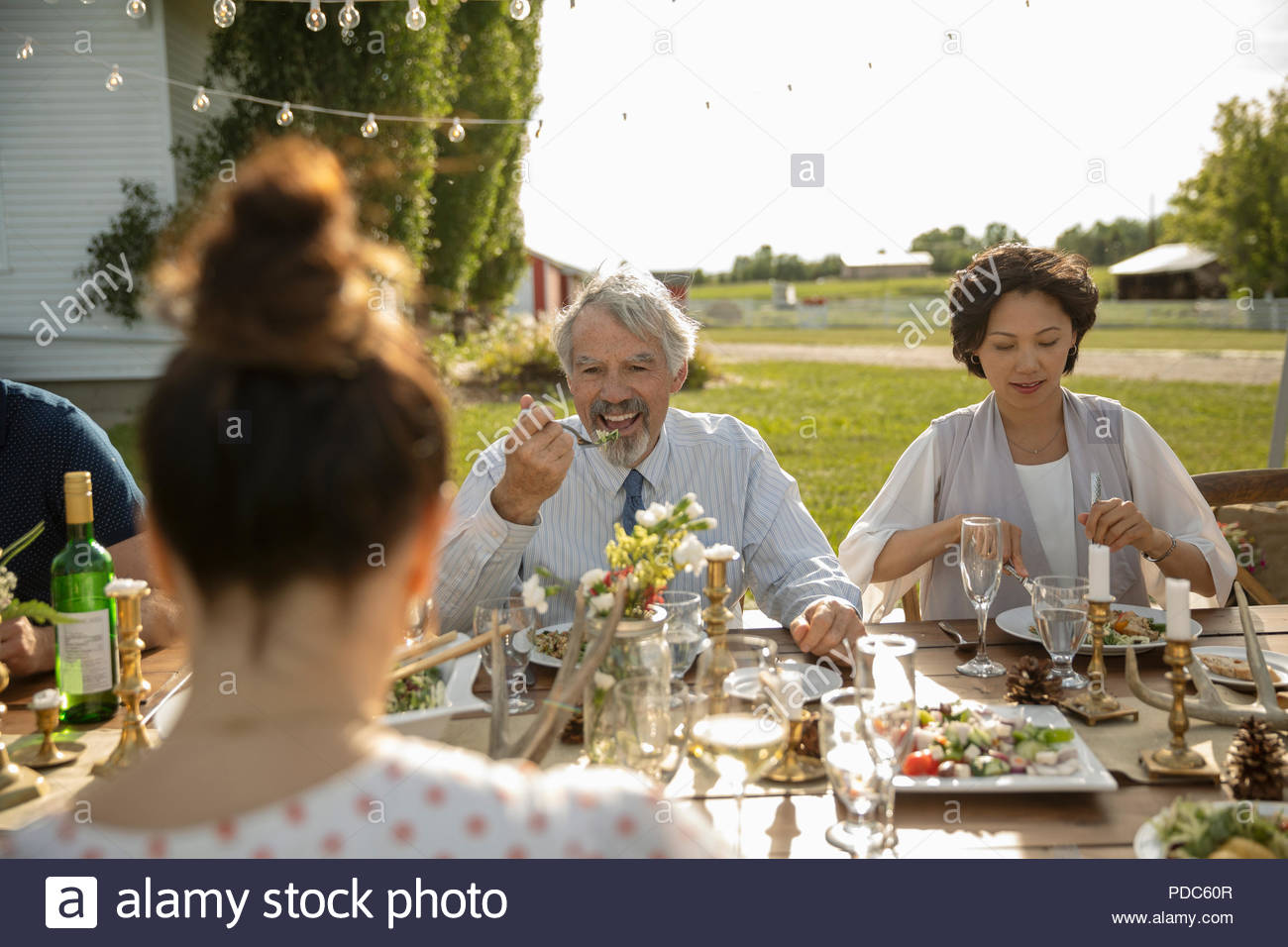 Friends enjoying garden party lunch - Stock Image