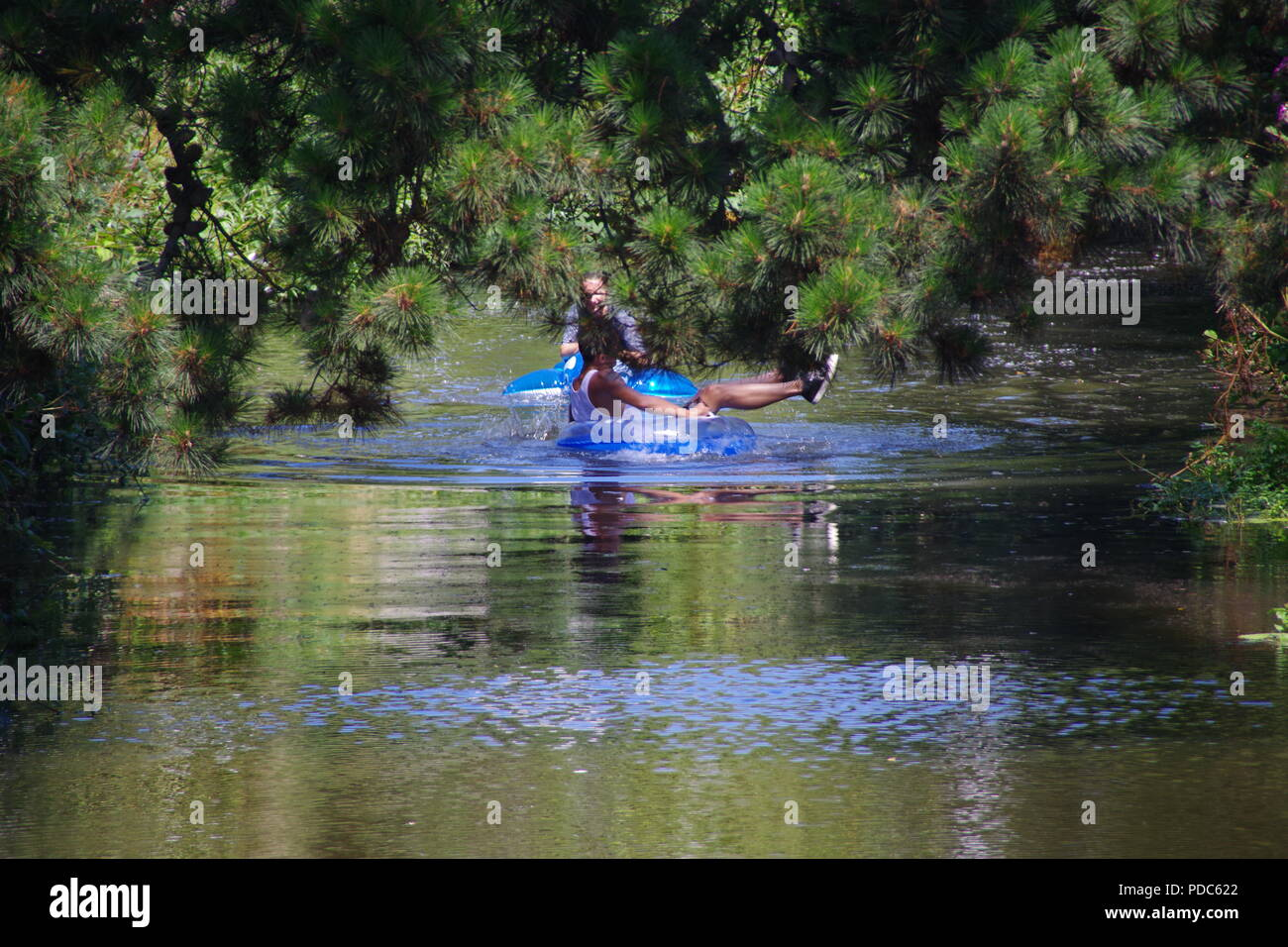 Teenagers on Inflatables, Cooling Off by River Rafting Down the River Sid on a Hot Summers Day. East Devon, UK. August, 2018. - Stock Image