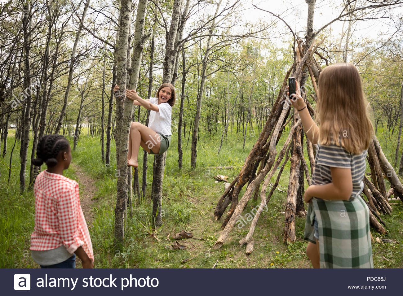 Tween girl friends with camera phone climbing tree, playing in woods - Stock Image