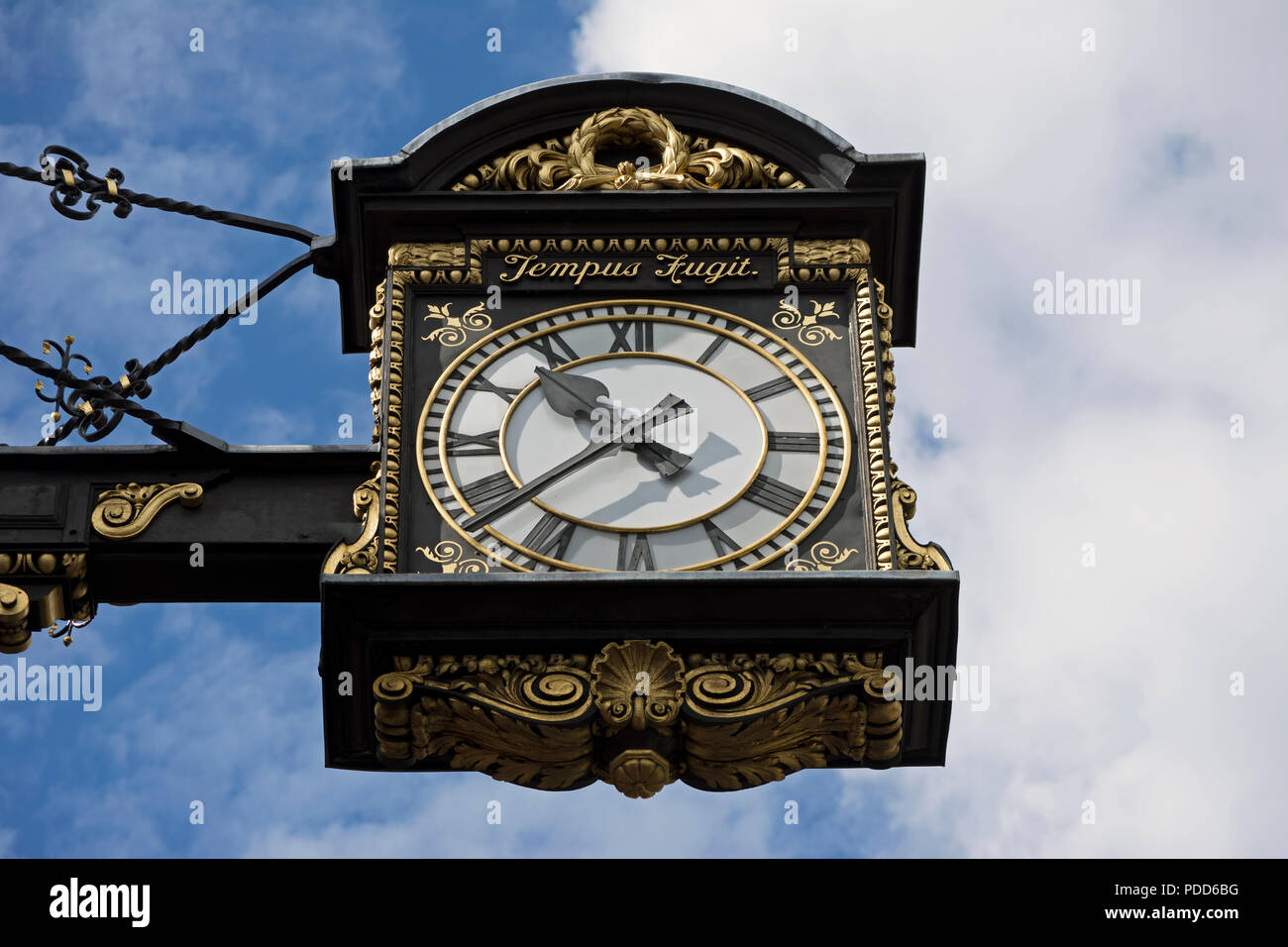 hanging clock outside the 1908 chelsea old town hall, chelsea, london, england, with latin inscription tempus fugit, or time flies - Stock Image