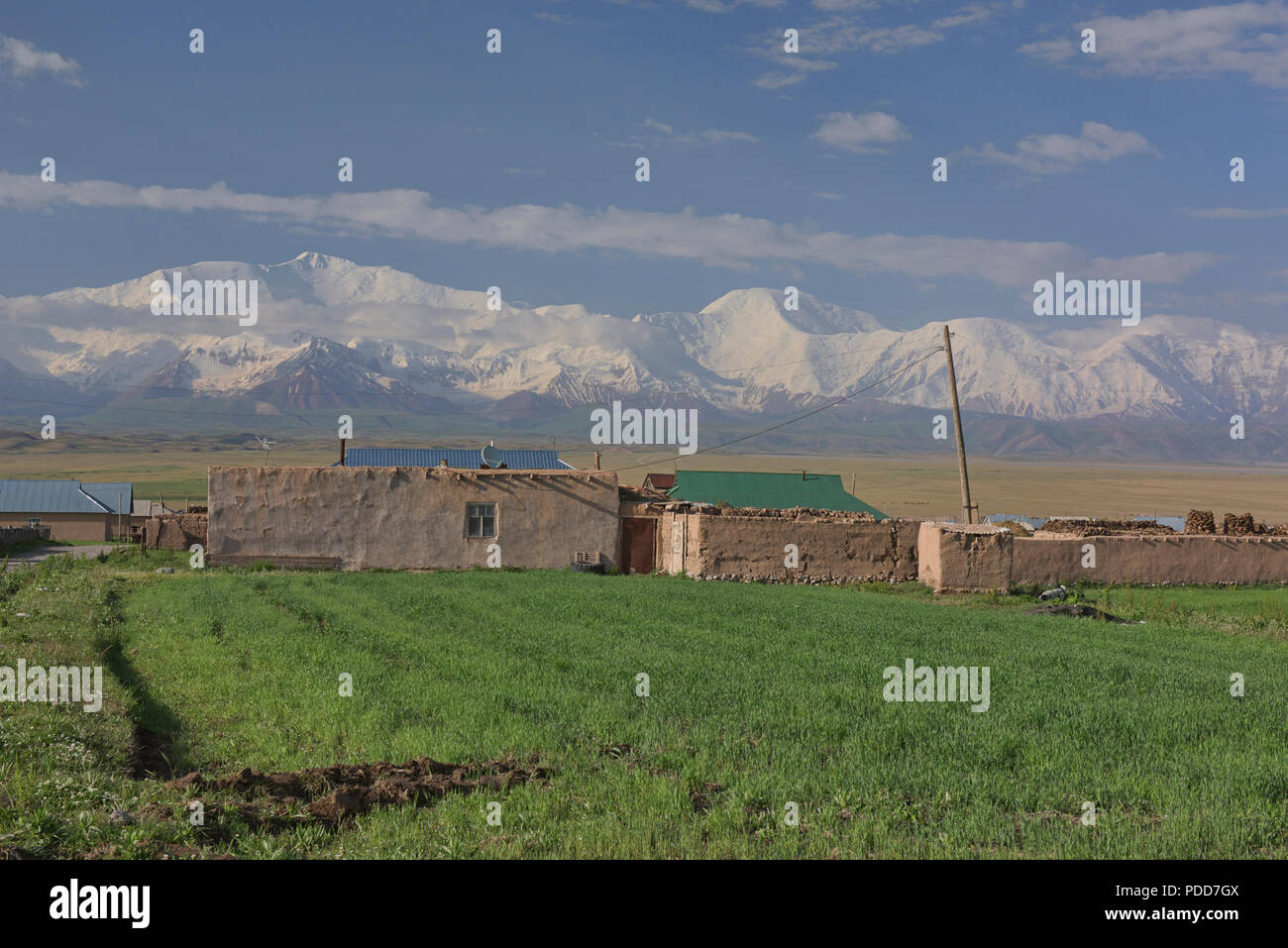 7,134 metre Lenin Peak and the High Pamirs rise over Sary Mogul, Kyrgyzstan Stock Photo