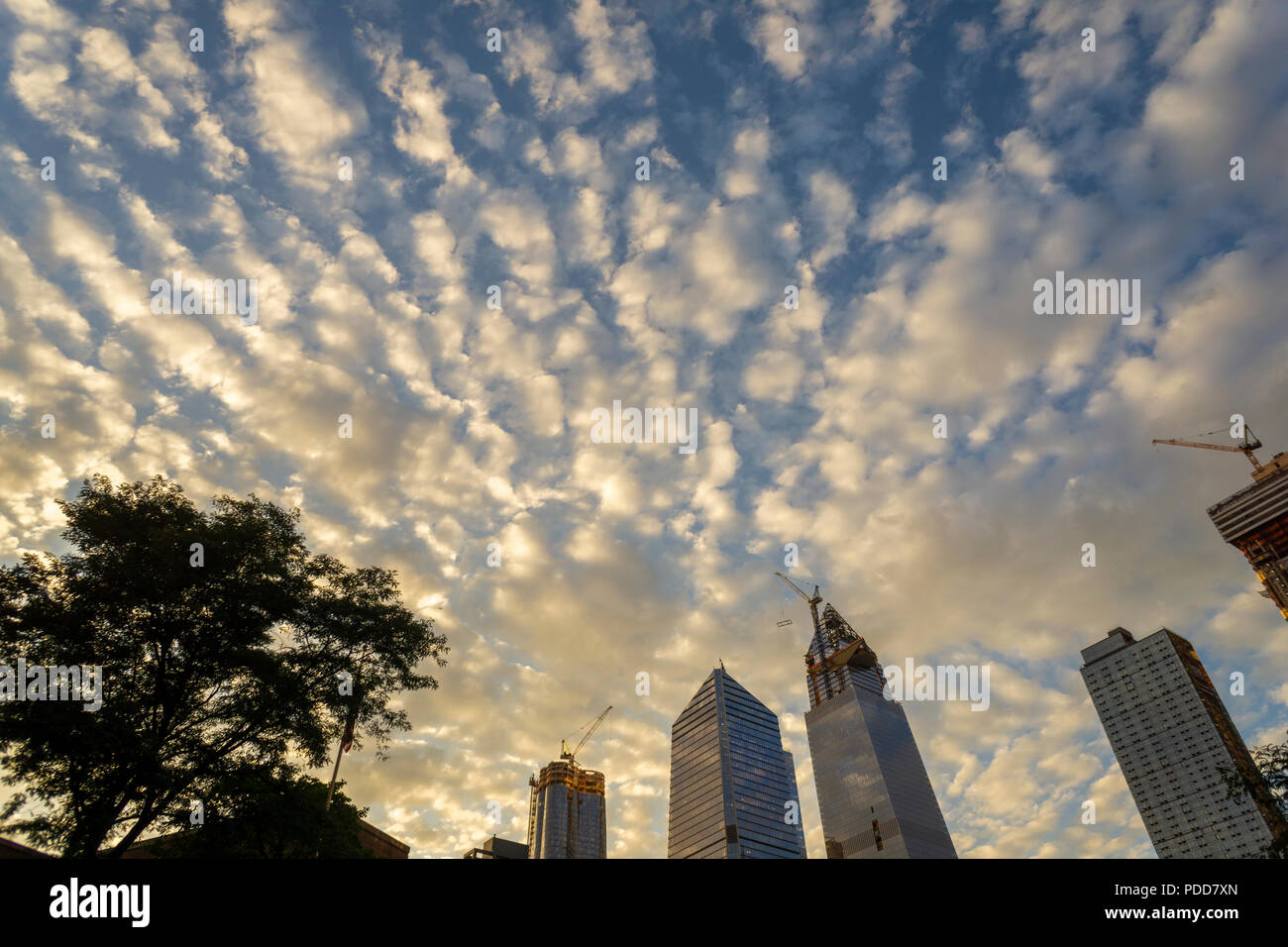 The Hudson Yards development on the west side of Manhattan in New York canopied by an altocumulus cloud formation at sunset on Tuesday, July 31, 2018.  (© Richard B. Levine) - Stock Image
