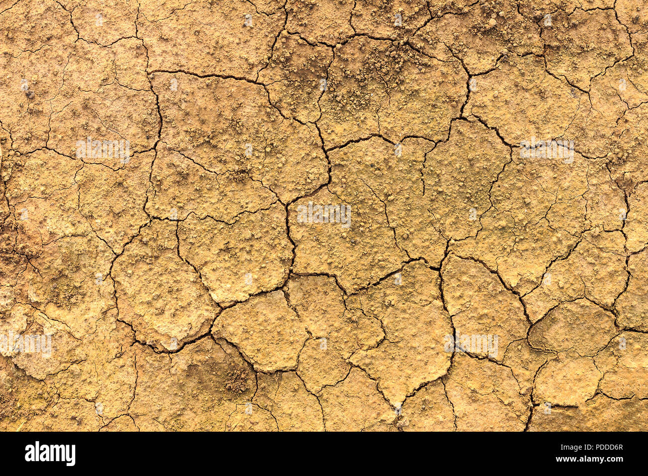 dry soil texture background - Stock Image