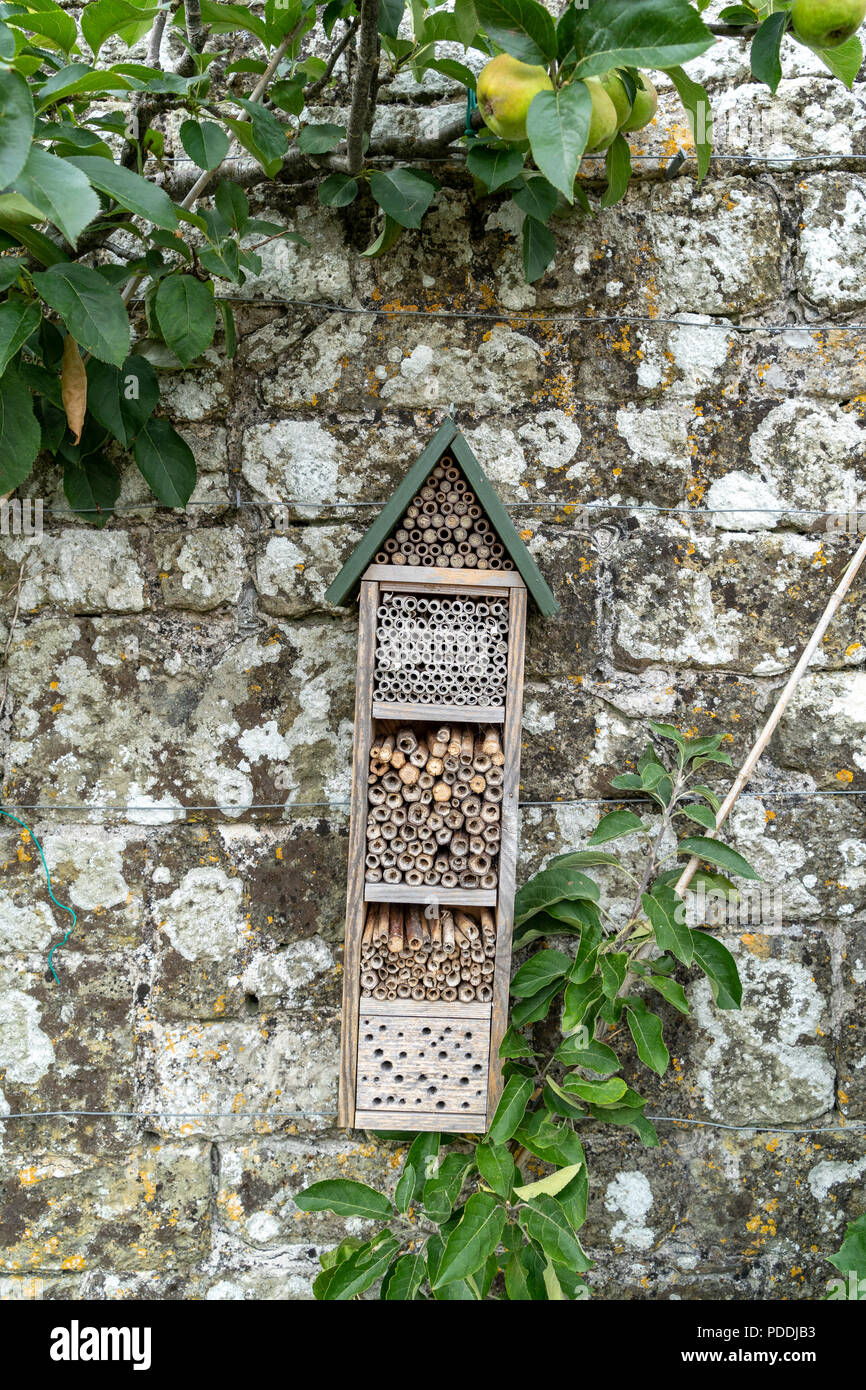 Bug hotel mounted on old stone wall in garden - Stock Image