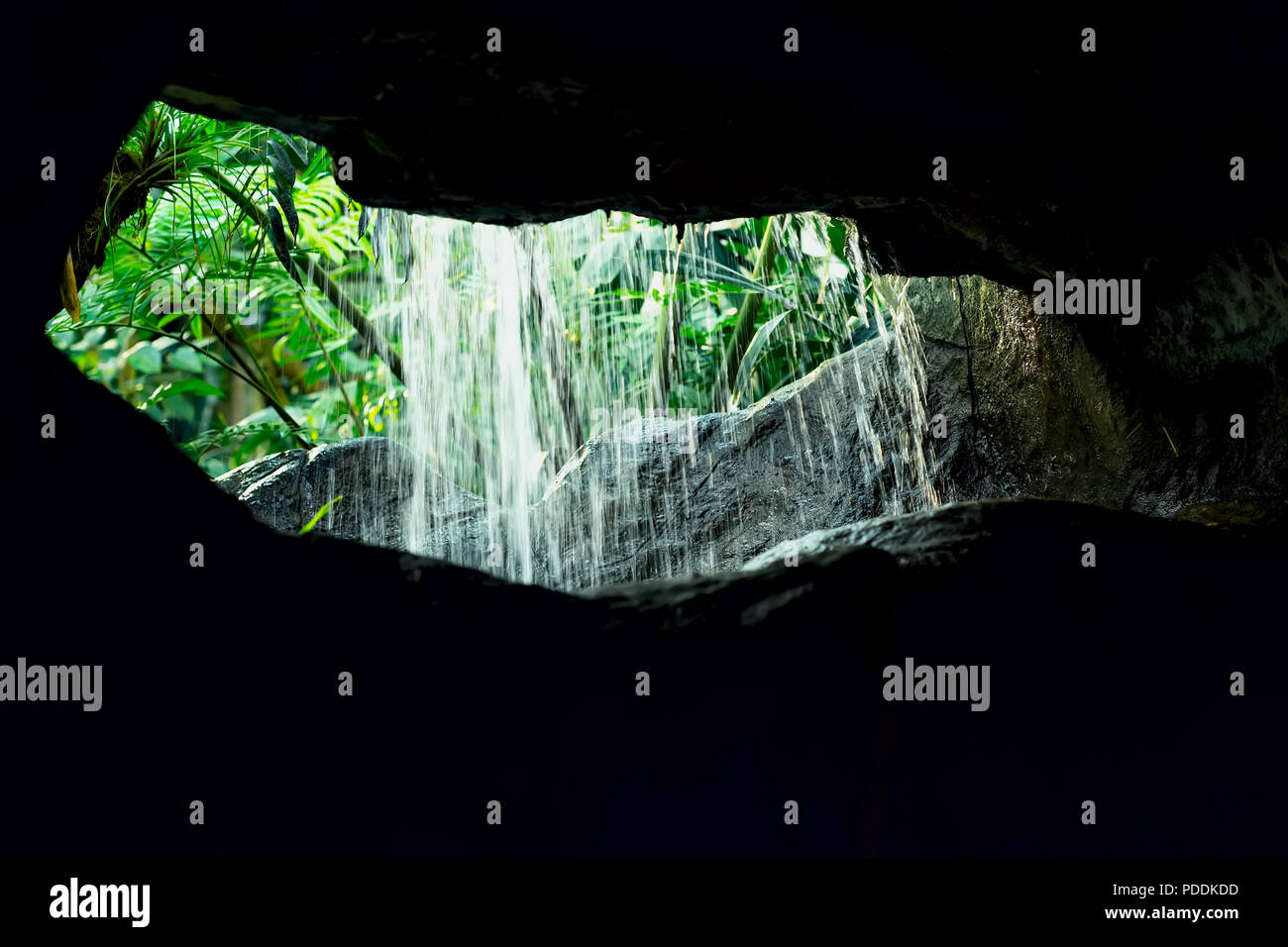 View through grotto on exotic tropical plants and waterfall. Dark background of stone and rocks - Stock Image