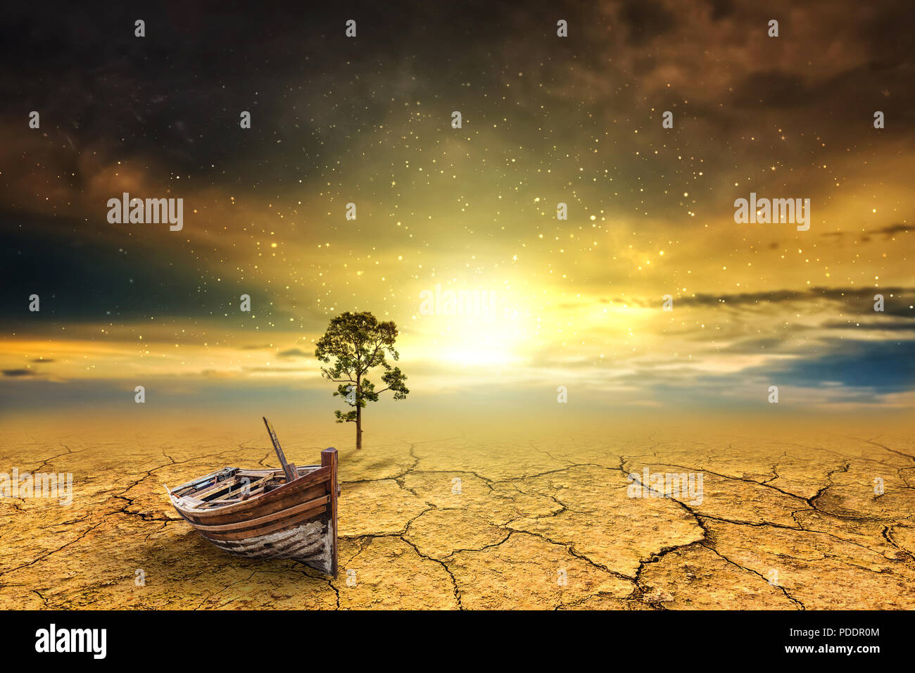 Shipwreck tree dry soil texture background - Stock Image
