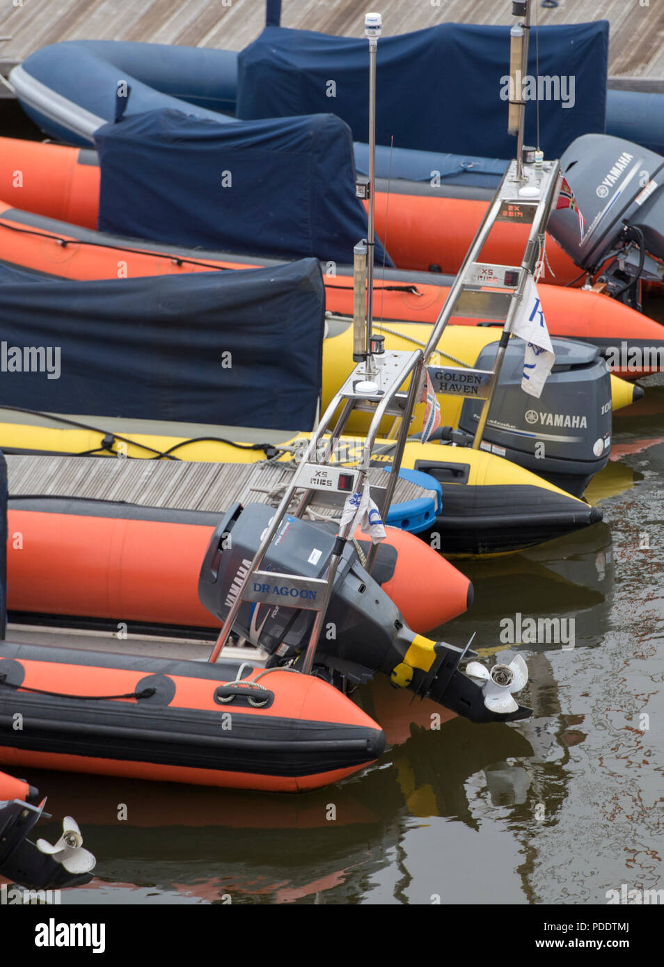 rigid inflatable boats or rib craft moored together in a line nect to each other in a yacht marina or harbour. - Stock Image