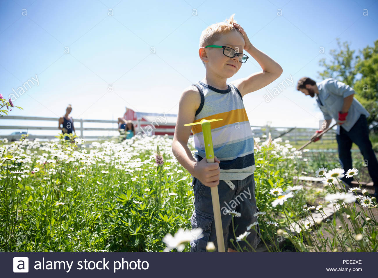 Boy gardening with family in sunny rural garden - Stock Image