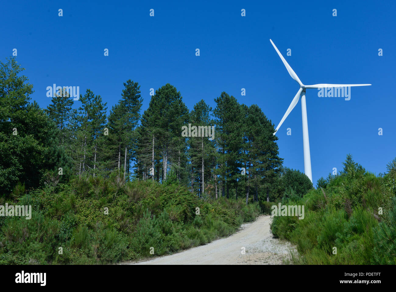 wind turbines green electricity contrast with blue sky - Stock Image