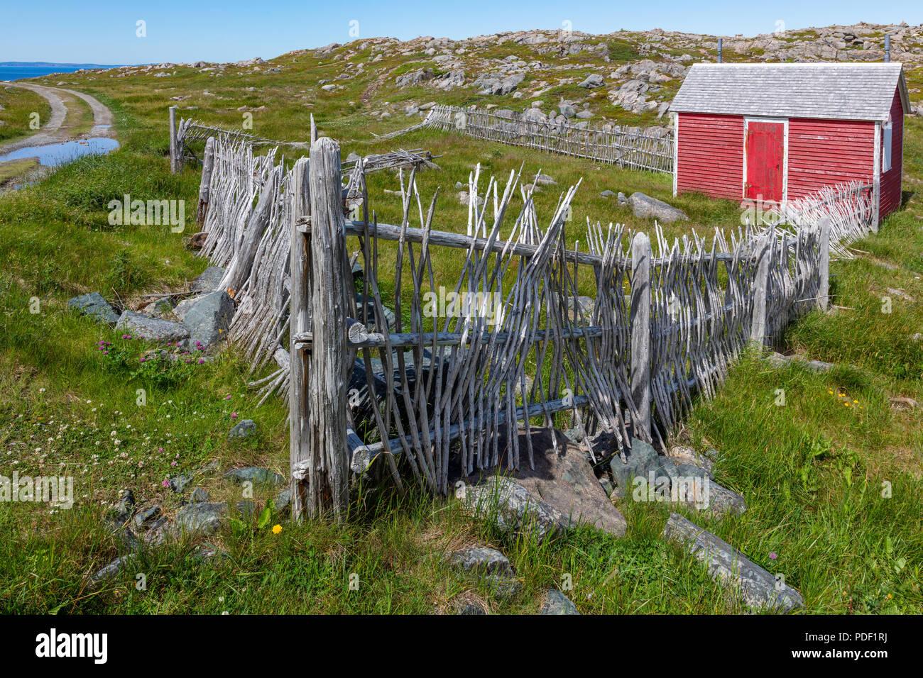 Red shack and fence, Cape Bonavista Lighthous Provincial Historic Site, Newfoundland Labrador, Canada - Stock Image