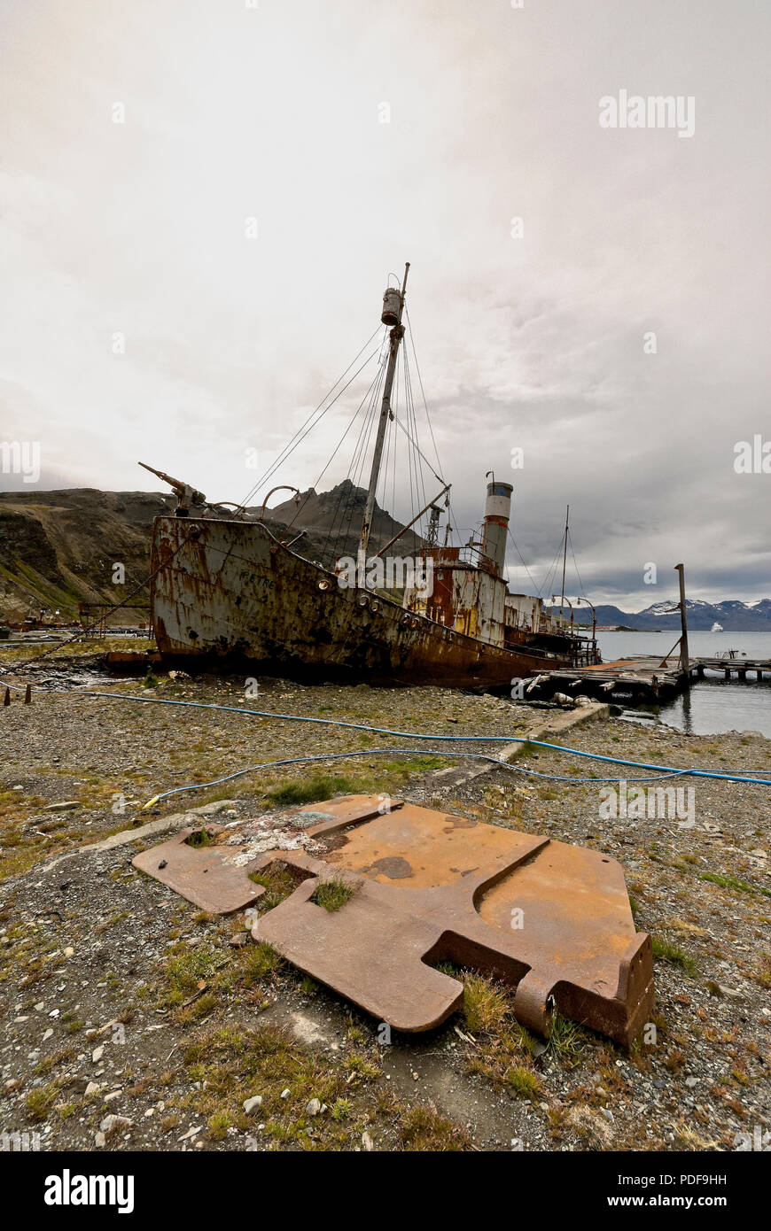 Derelict and deverticalcaying whaling ship Petrep in Grytviken harbour, South Georgia, Antartica. - Stock Image