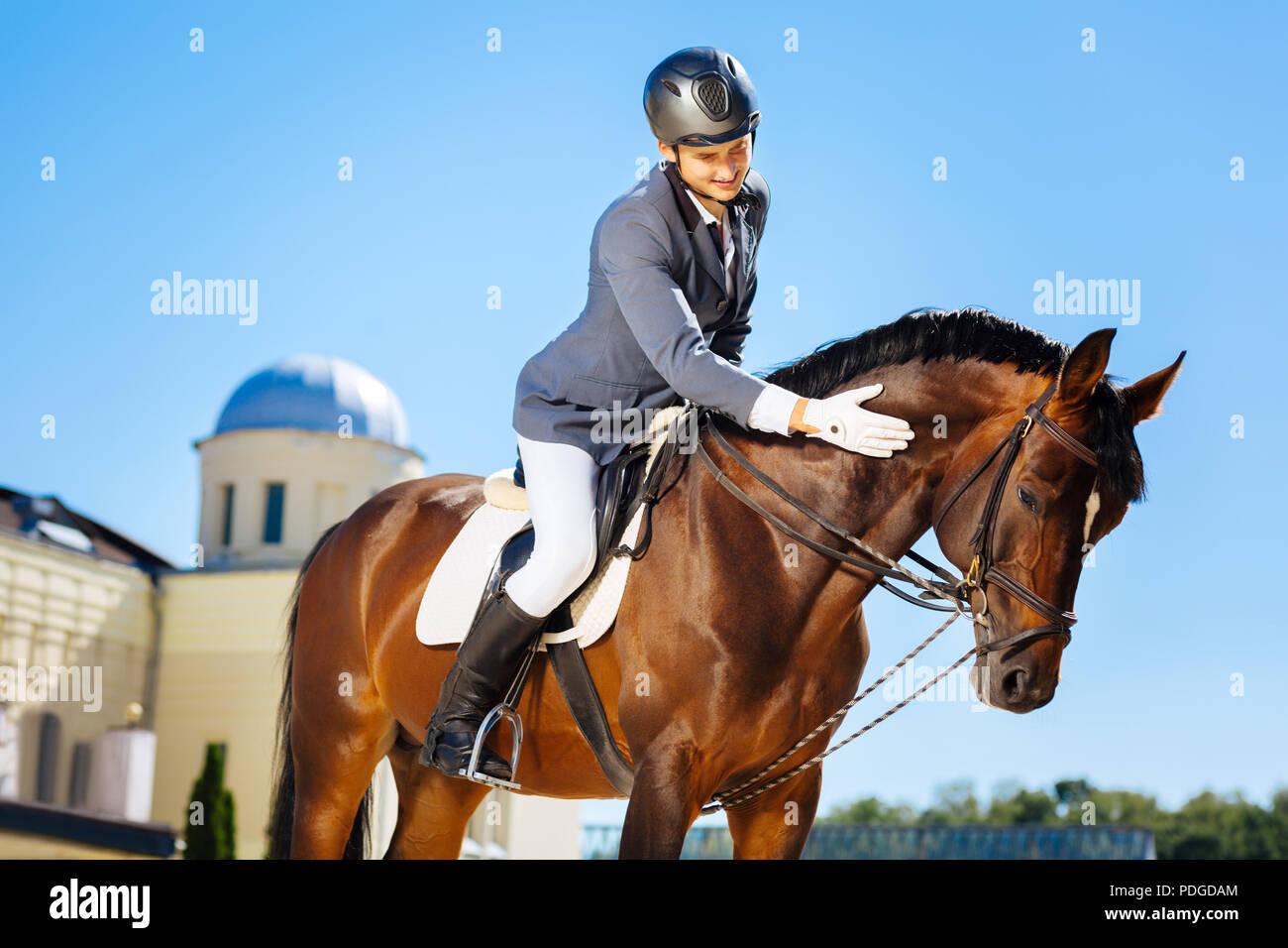 Handsome smiling man wearing helmet petting horse - Stock Image