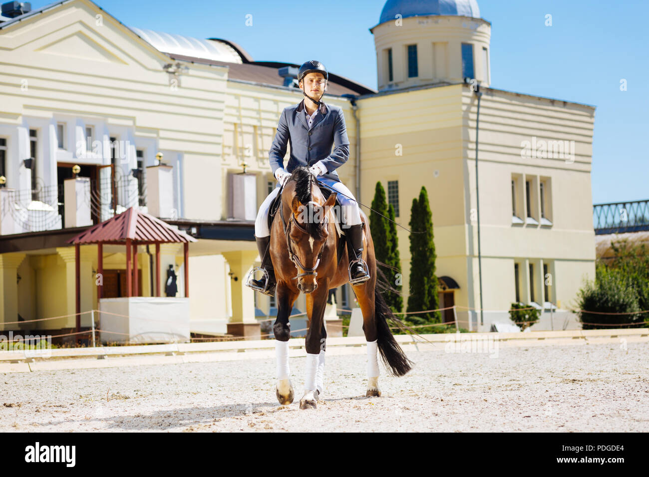 Professional experienced equestrian sitting on tired brown horse - Stock Image
