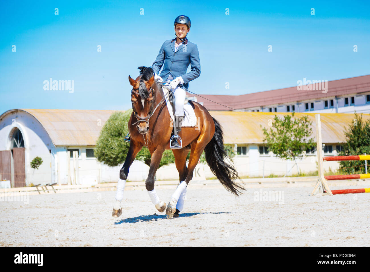 Horse man feeling active while riding his brown racehorse - Stock Image