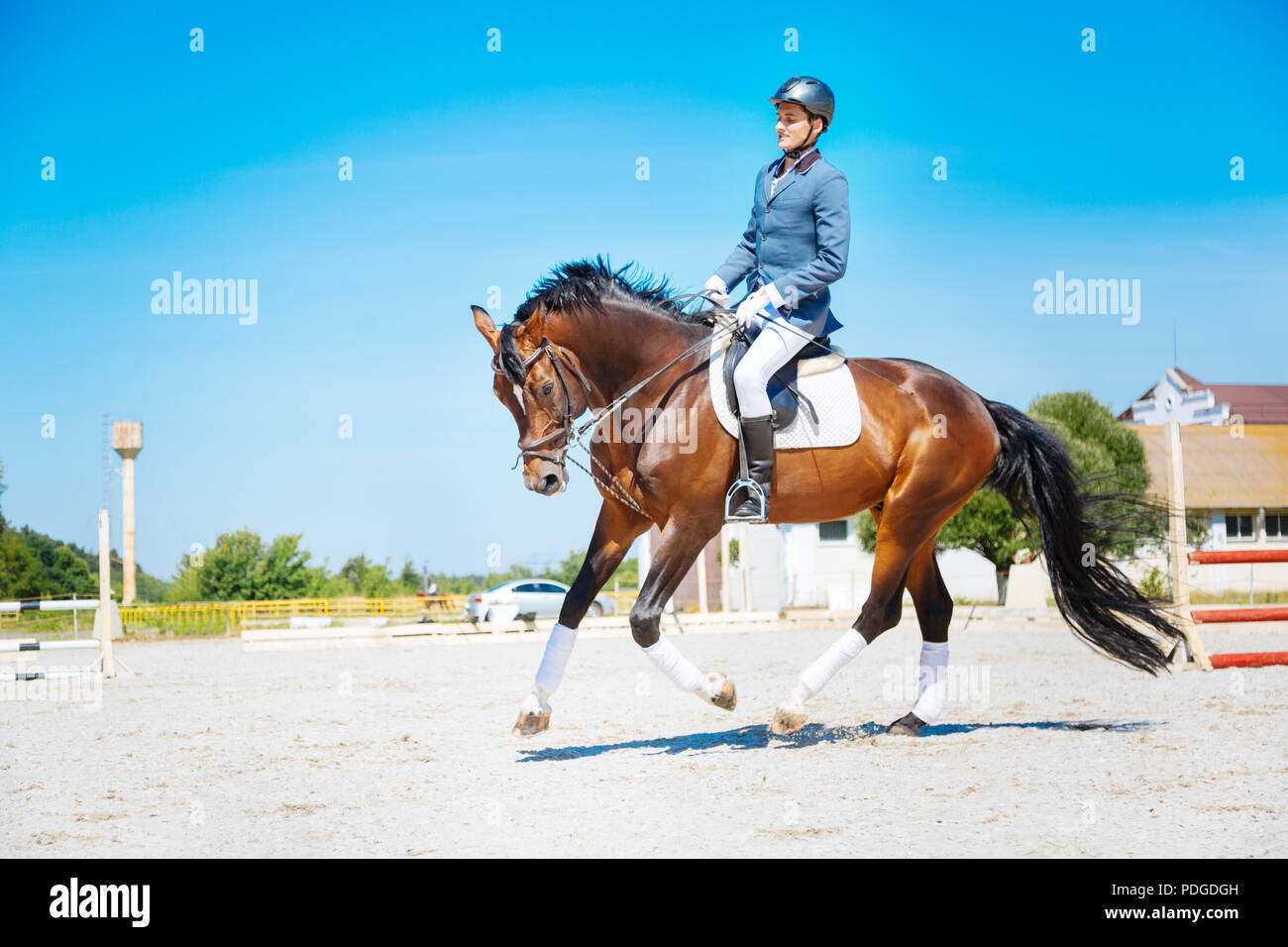 Experienced horse man riding professional racehorse Professional racehorse. - Stock Image