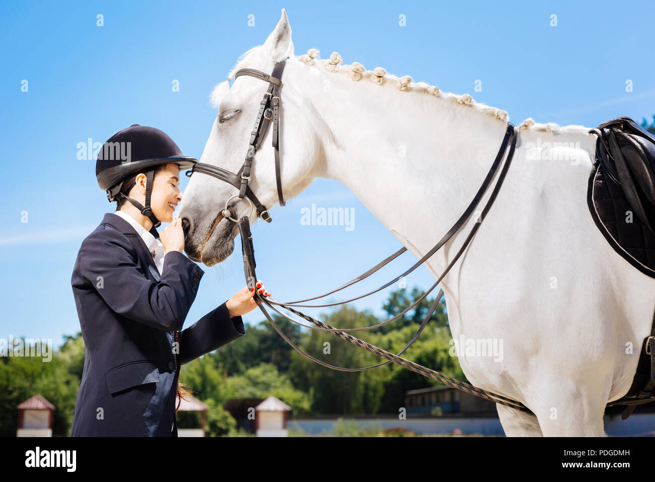 Caring female rider loving her white horse greatly - Stock Image