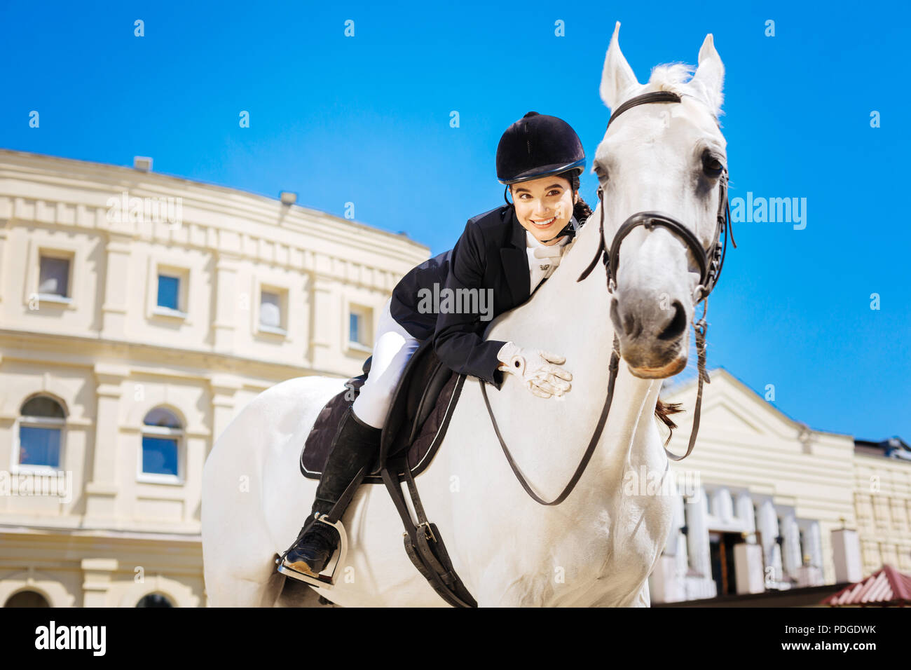 Black-eyed beaming female rider leaning on her devoted white horse - Stock Image