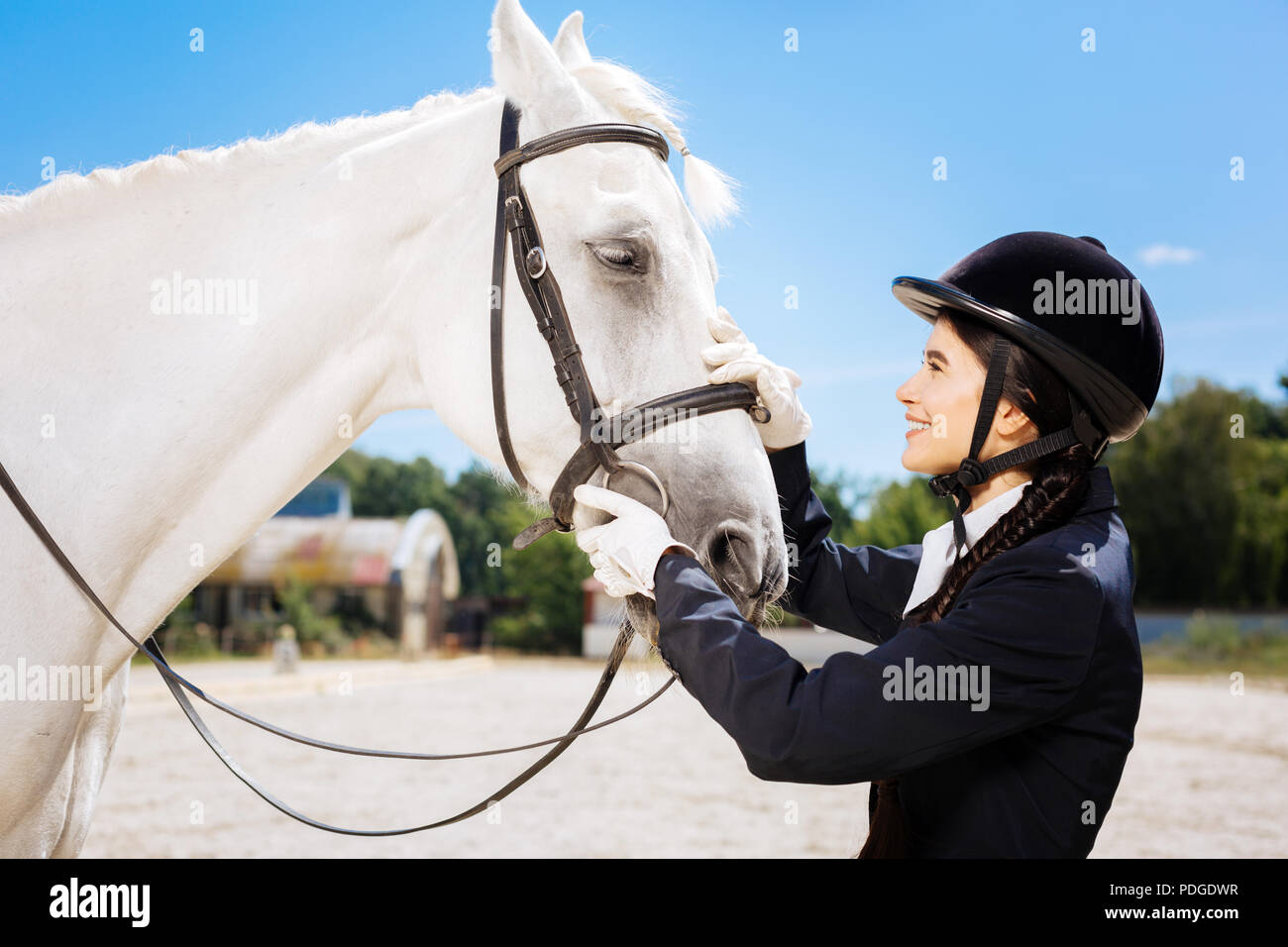 Young promising horsewoman coming to her lovely white horse - Stock Image