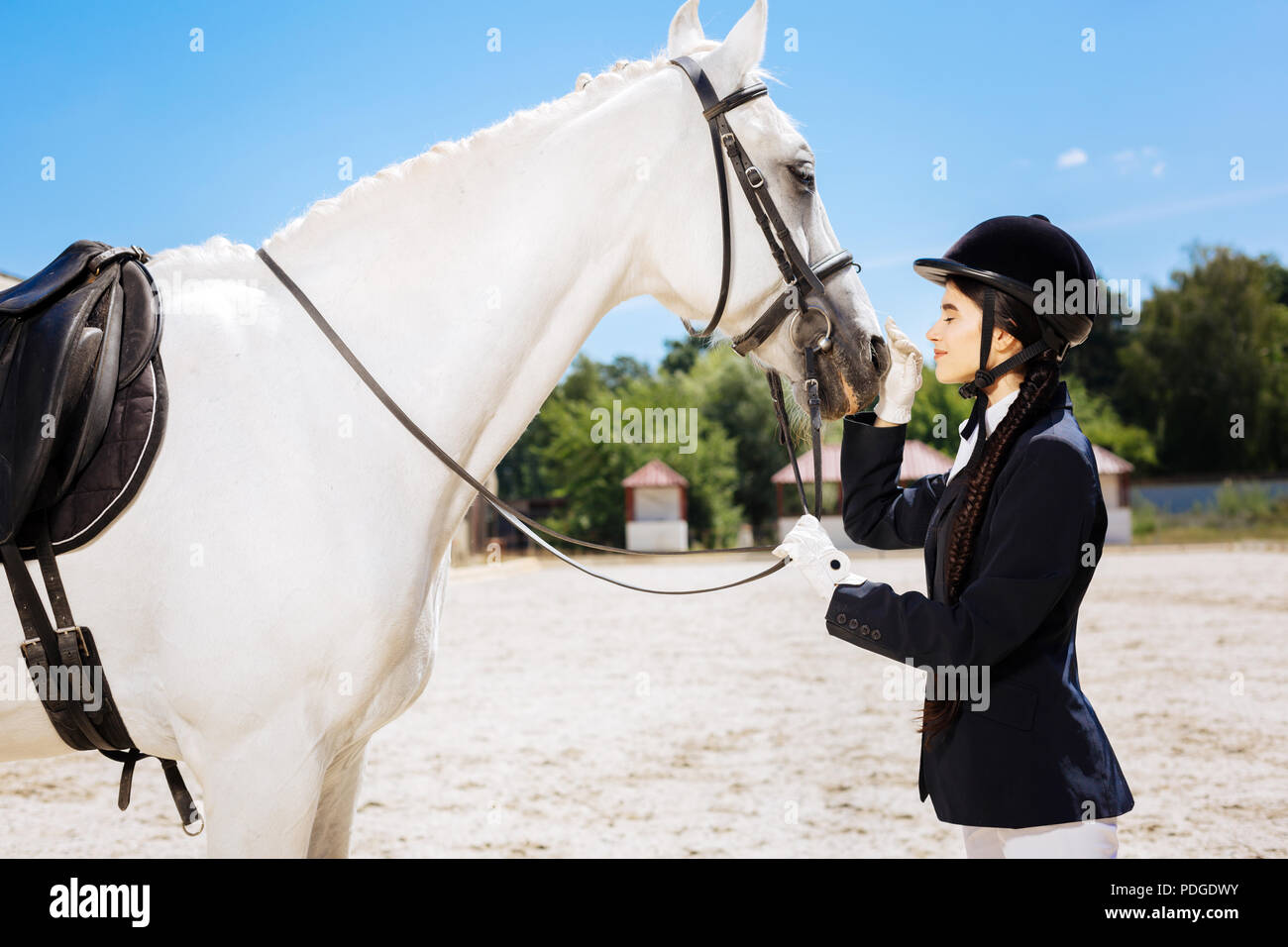 Beautiful slim woman loving equestrianism looking at white horse - Stock Image