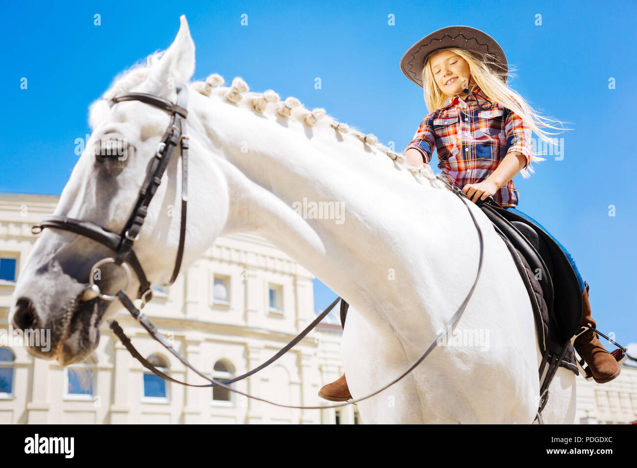 Beautiful schoolgirl hugging white horse while sitting on him - Stock Image