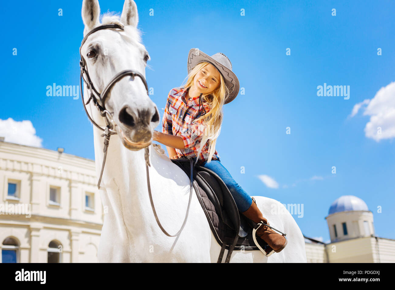 Beaming schoolgirl touching her white racing horse - Stock Image