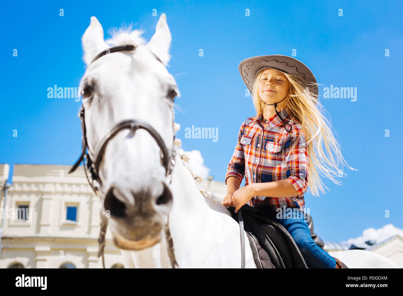 Girl with long blonde hair feeling nice while riding horse - Stock Image