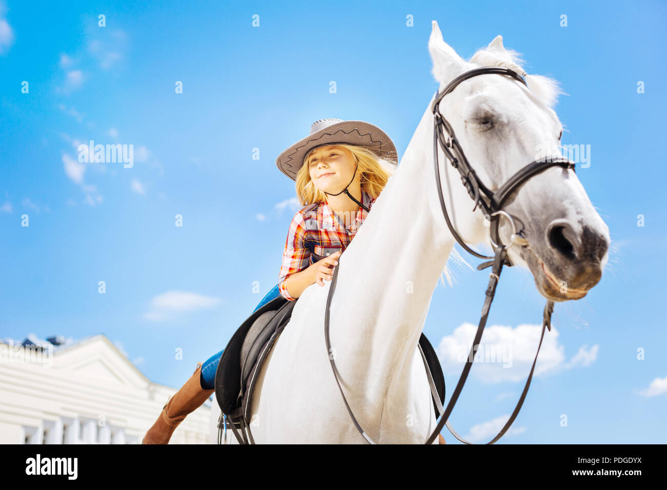 Blonde-haired cowboy girl leaning on her racing horse - Stock Image