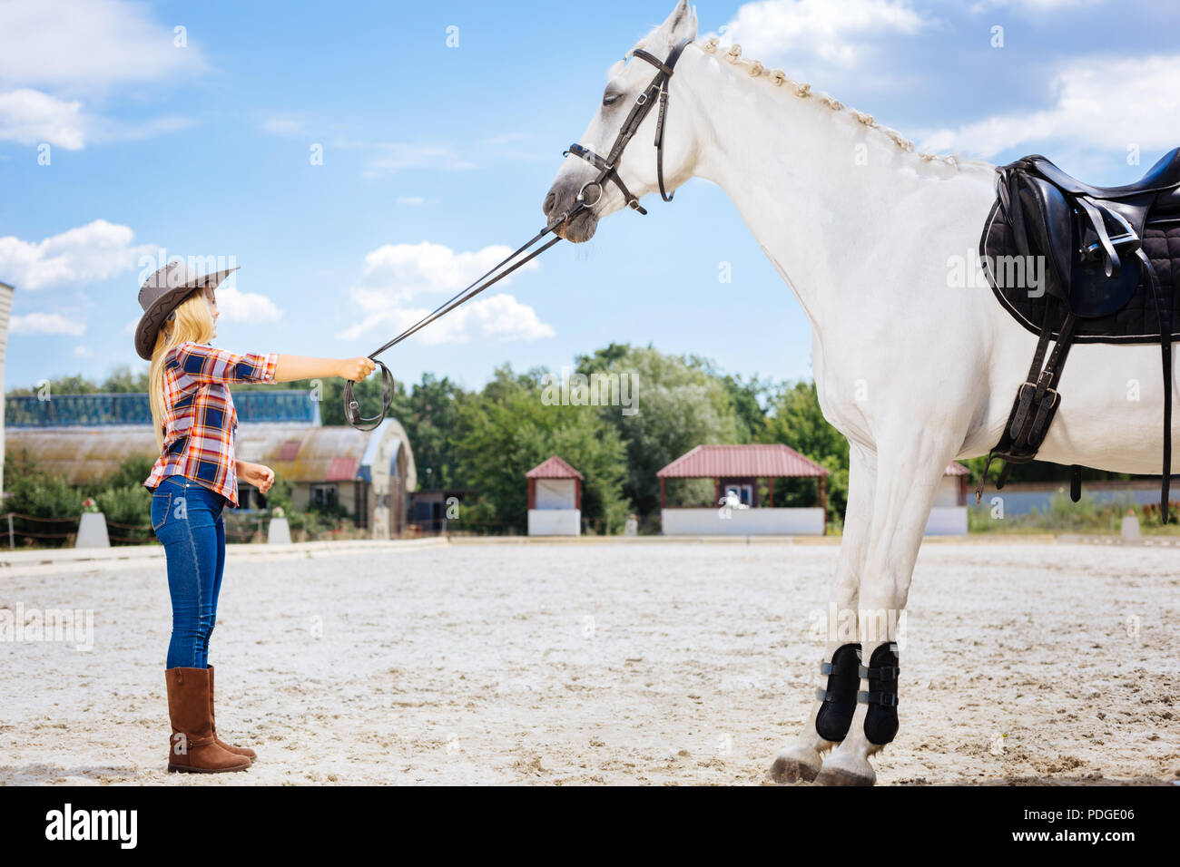 Beautiful blonde-haired schoolgirl coming to race track and horse - Stock Image