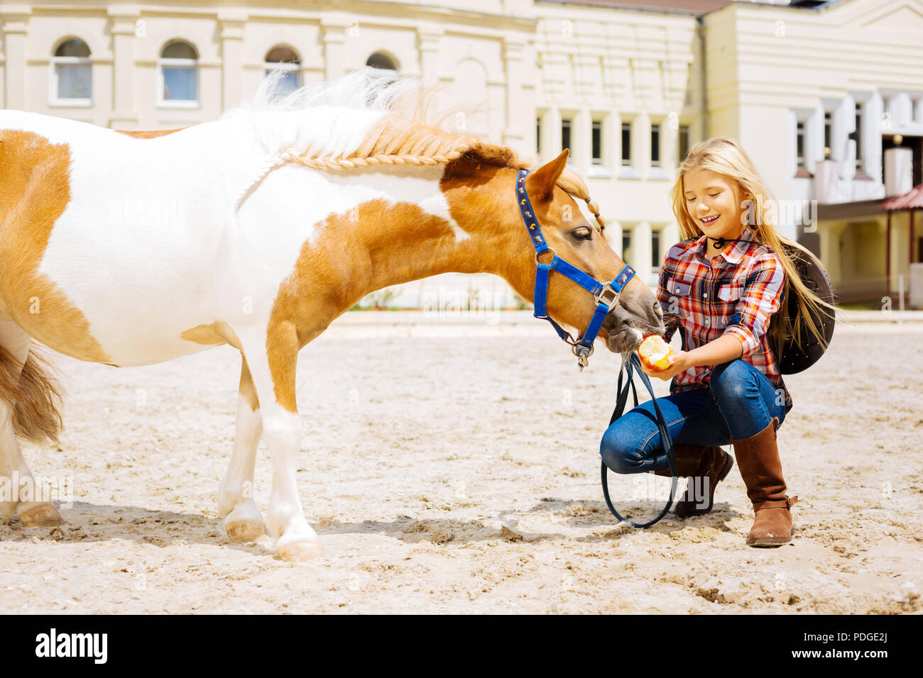Amused schoolgirl spending her weekend near stable with horse - Stock Image