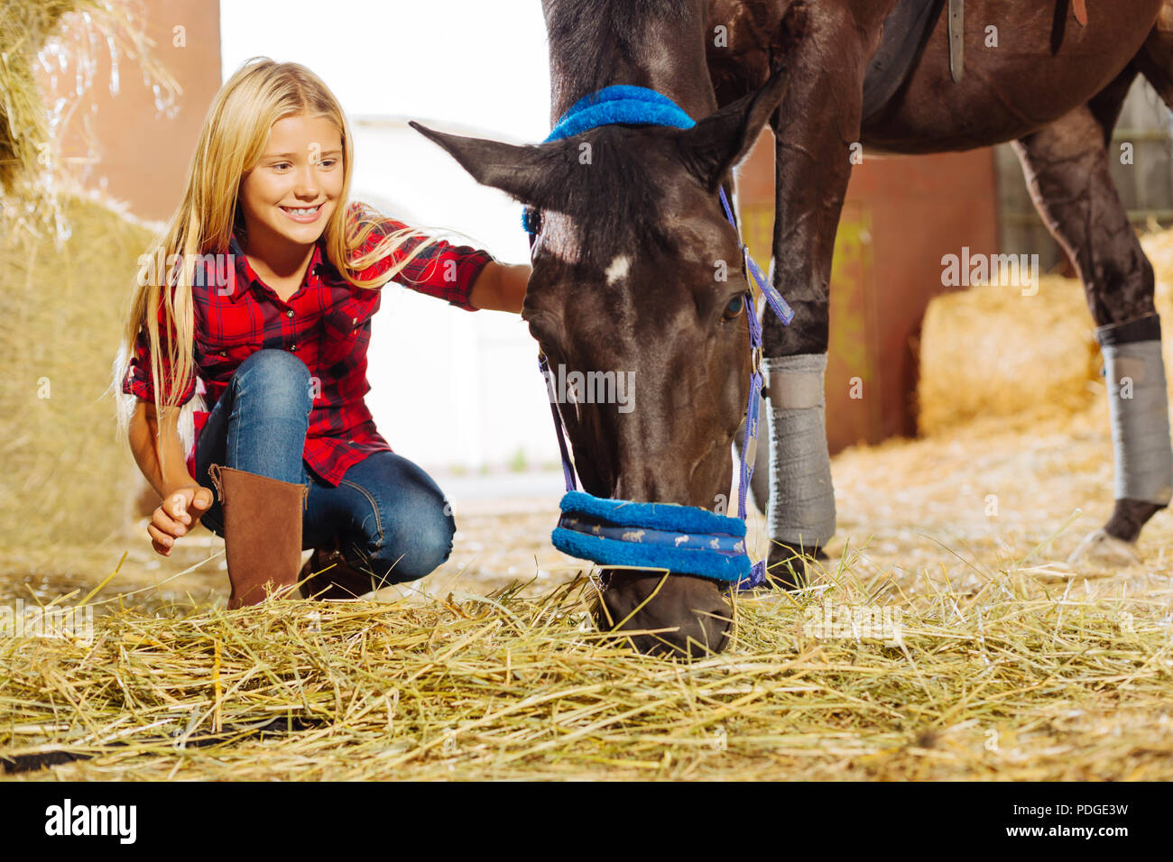 Beaming girl smiling broadly while visiting horse in stable - Stock Image
