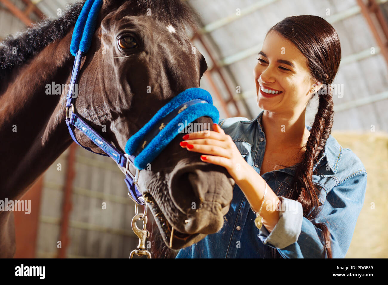 Beautiful woman with red nails smiling broadly looking at horse - Stock Image