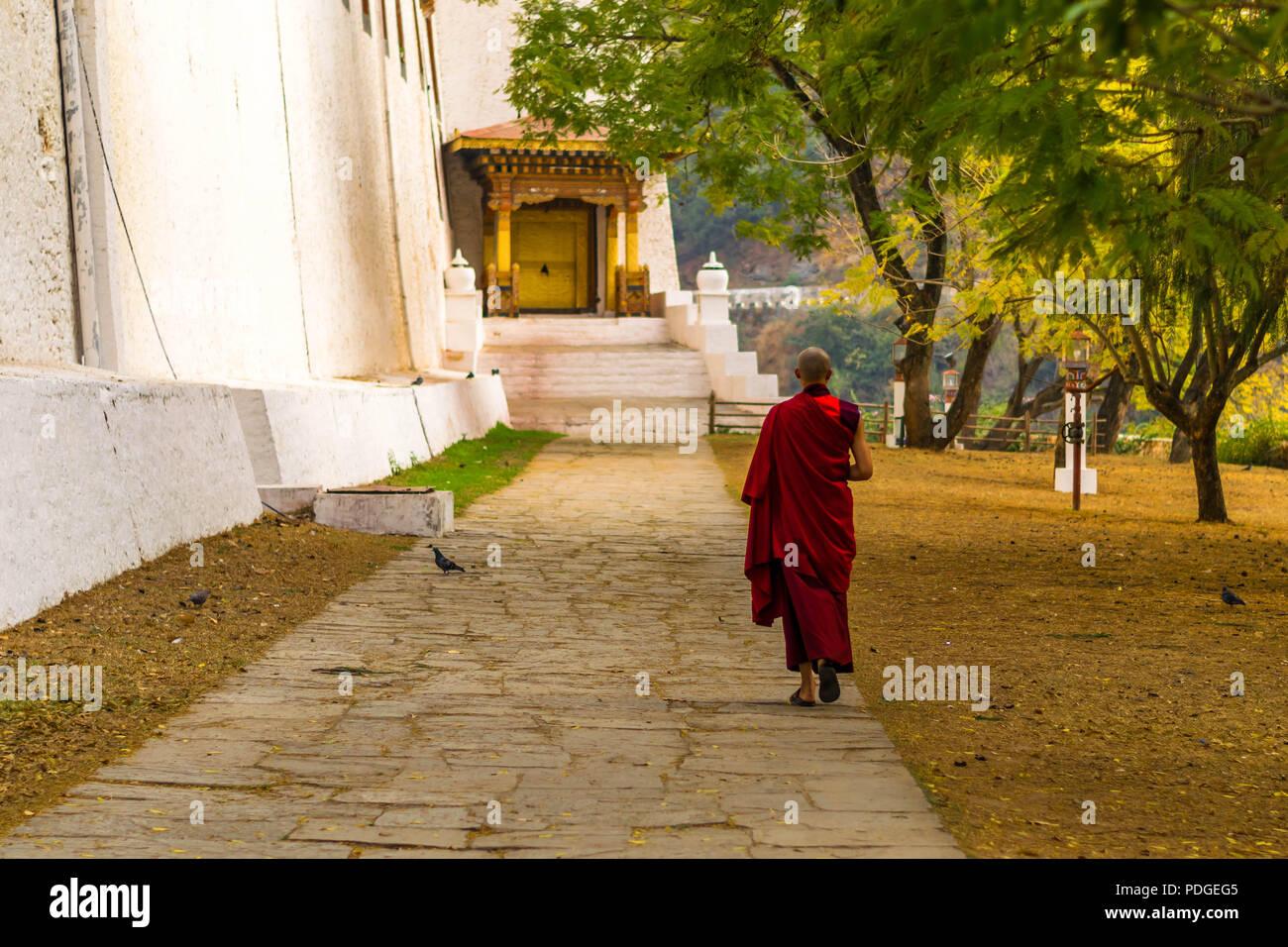 Buddhist Monk at Punakha Monastery in Bhutan - Stock Image