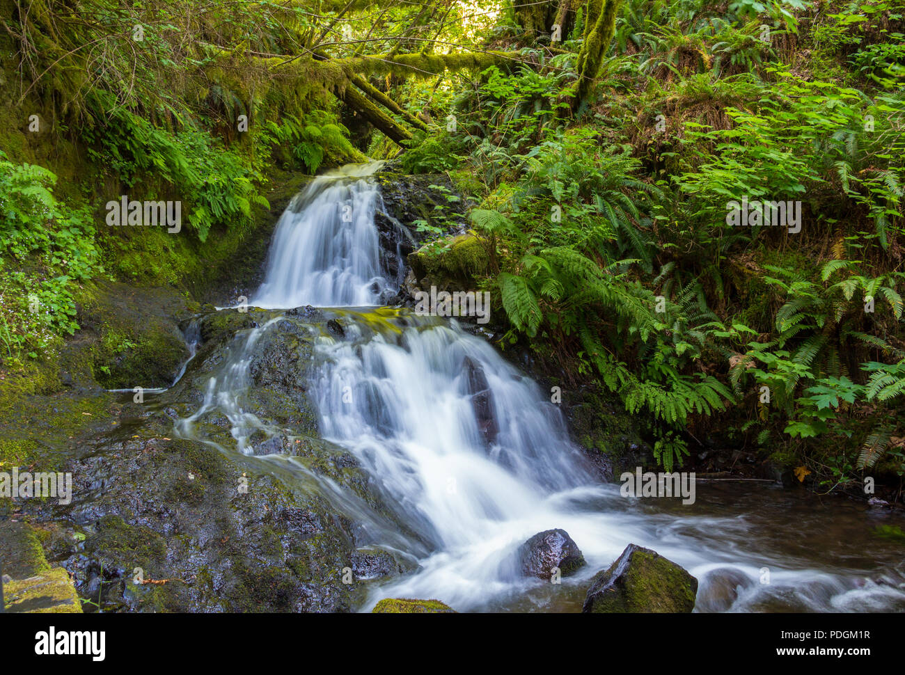 Beautiful waterfalls from a small stream in Columbia River Gorge, Portland, Oregon Stock Photo