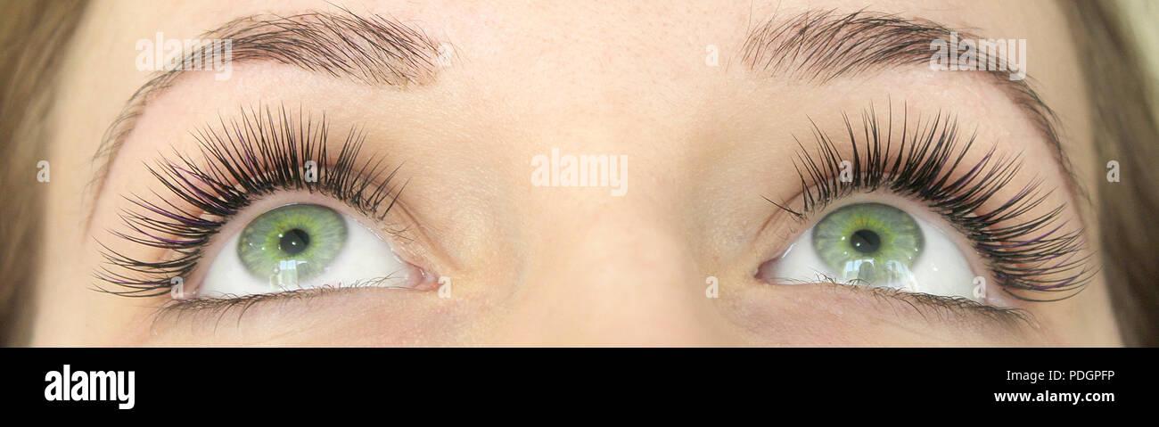 0dbbab8259f Close up view of beautiful green female eyes with long false eyelashes.  Eyelash Extension Procedure