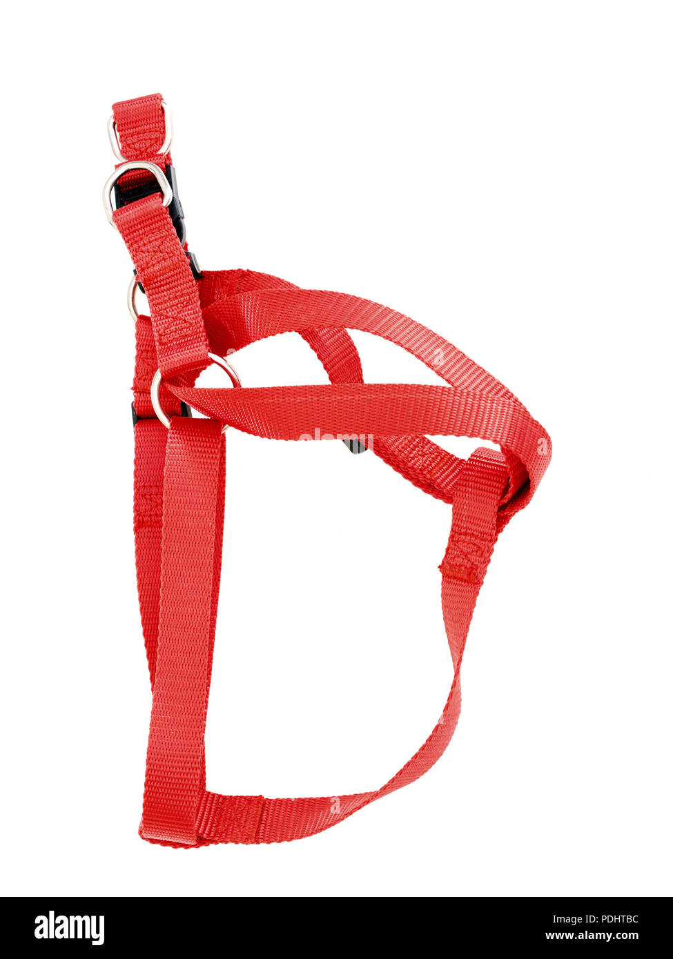 Generic, unbranded red dog harness, isolated on white. - Stock Image