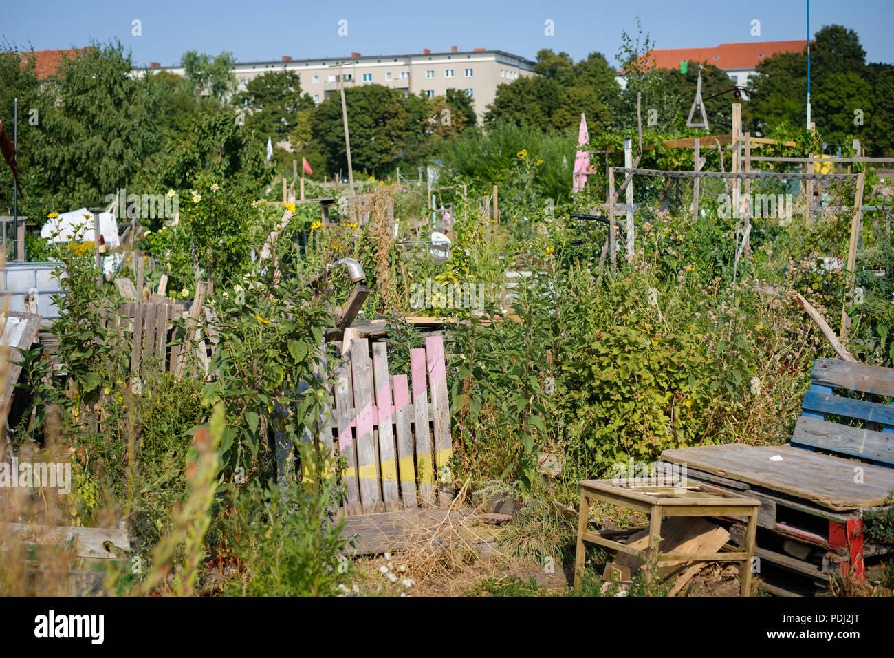 Urban Gardening at Tempelhofer Feld (Flughafen Tempelhof) in Berlin - Stock Image