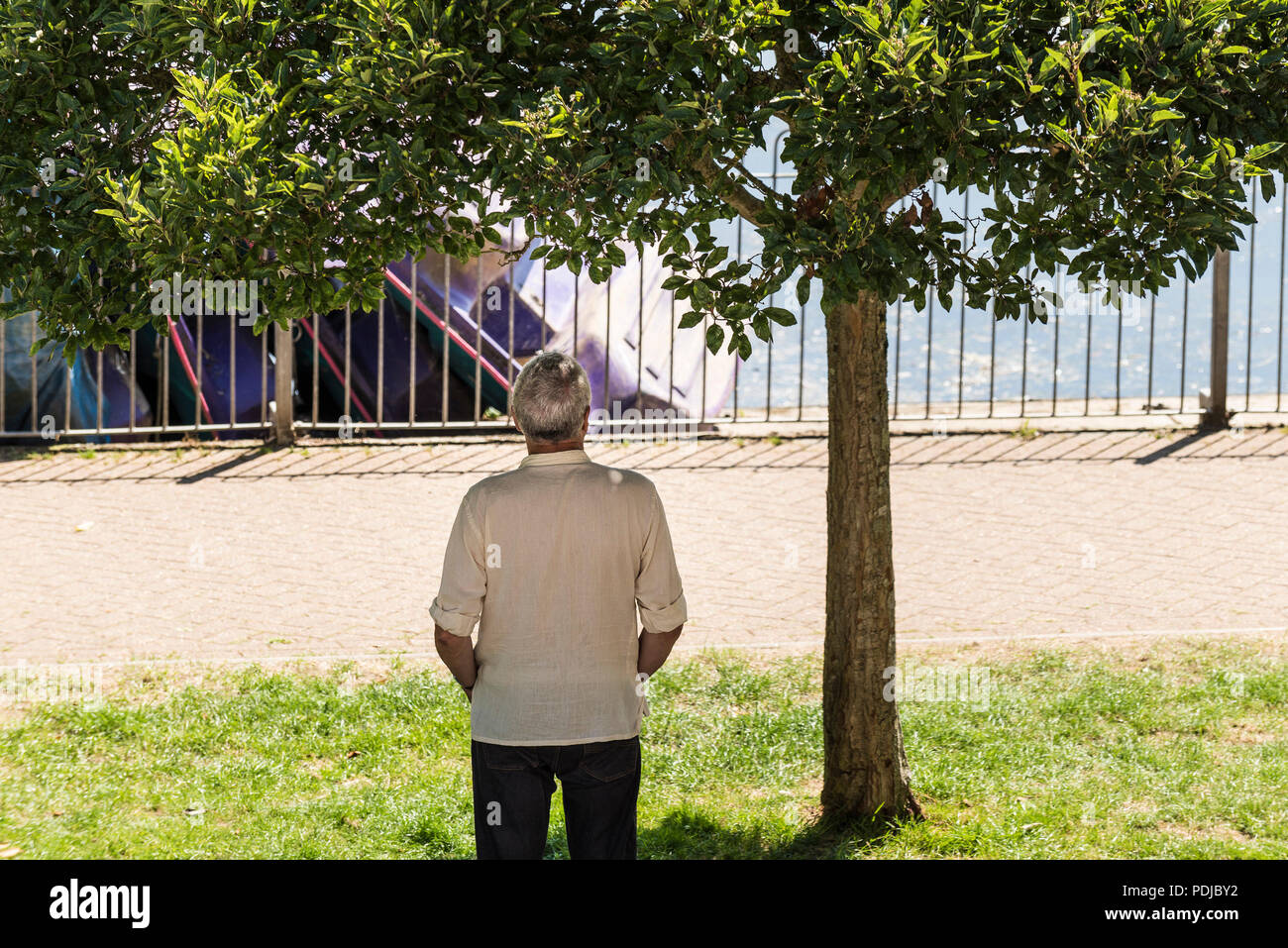 A man standing in the shade under a tree in Trenance Park in Newquay Cornwall. - Stock Image