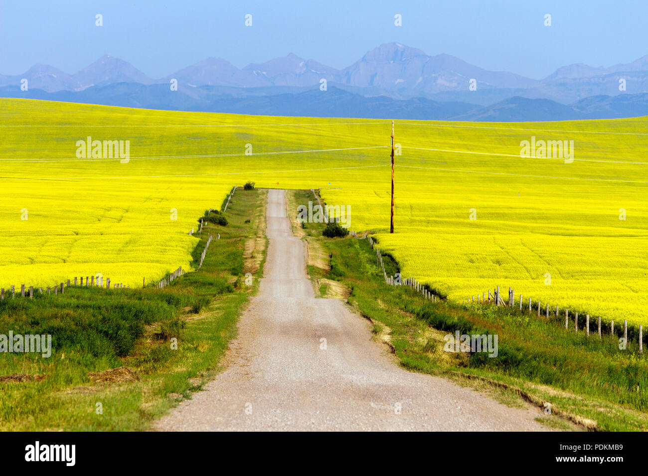 Surrounded By Canoloa Feilds Quotes: Country Farm Rural Canada Stock Photos & Country Farm