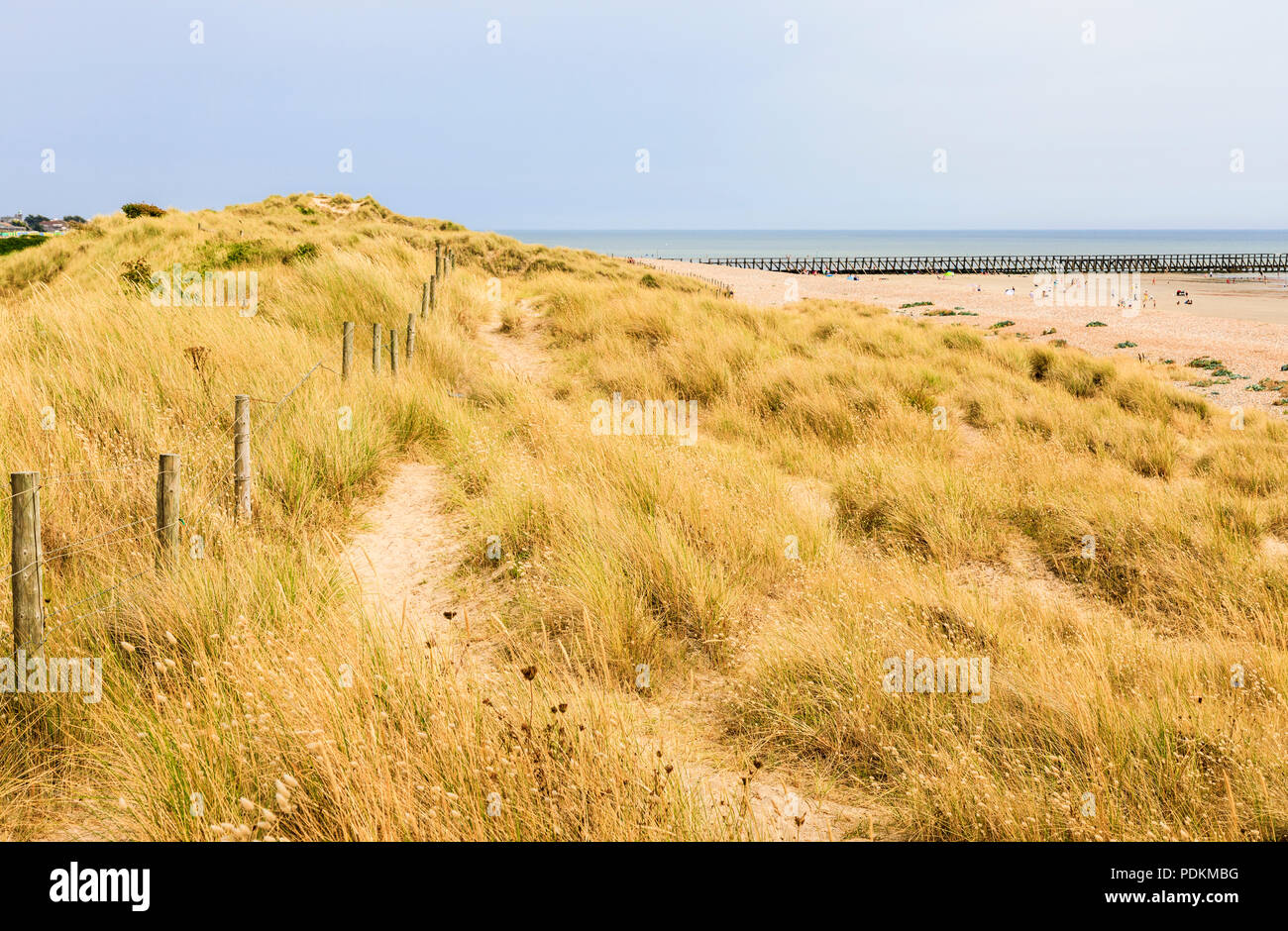 West Beach sand dunes in the Climping Beach SSSI local nature reserve, Littlehampton, a small holiday resort on south coast West Sussex, UK in summer - Stock Image