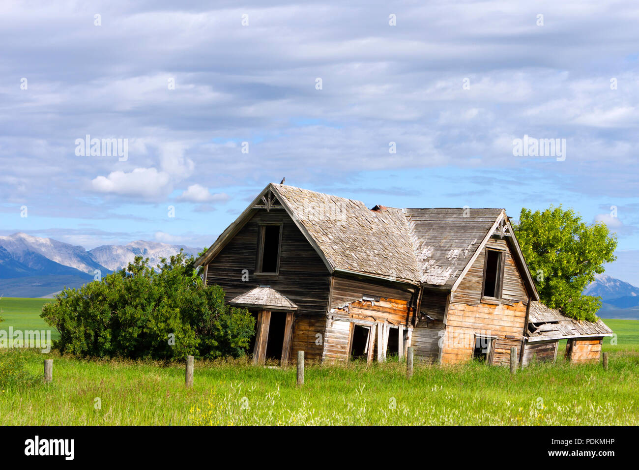Old abandoned house in a field near Pincher Creek, Alberta, Canada. - Stock Image