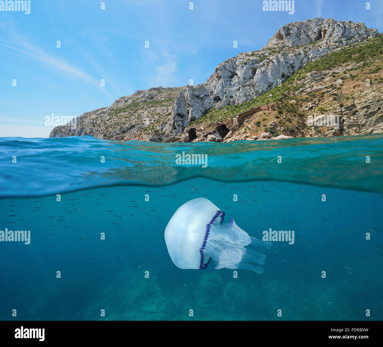 Rocky coast with a jellyfish and small fish underwater, split view above and below water surface, Mediterranean sea, Javea, Costa Blanca, Spain - Stock Image