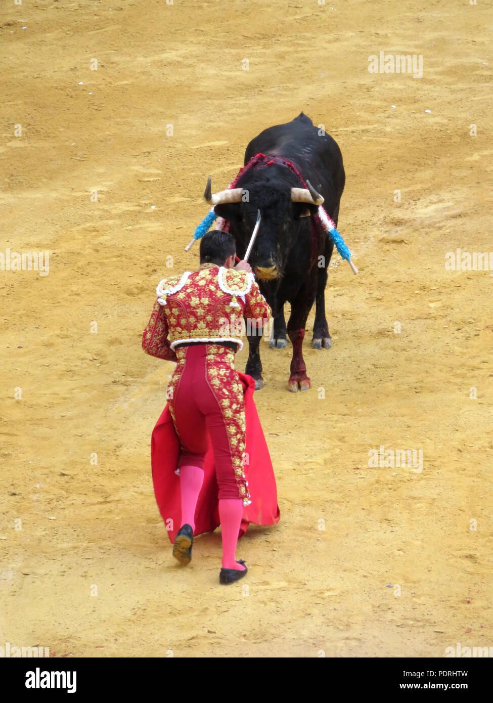 Bull fight. Bull fighterJosé María Manzanares , Plaza de Toros, Granada, Andalusia, Spain . Corrida. Matador with muleta cape.Spanish Tradition. Stock Photo