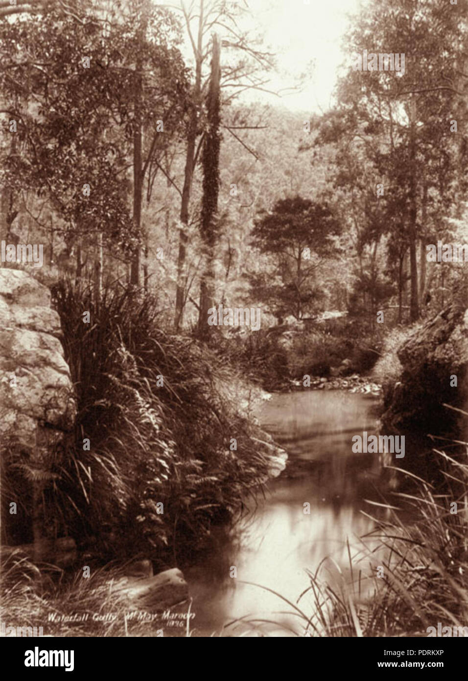 107 Queensland State Archives 2469 Waterfall Gully Mount May Maroon 1896 - Stock Image