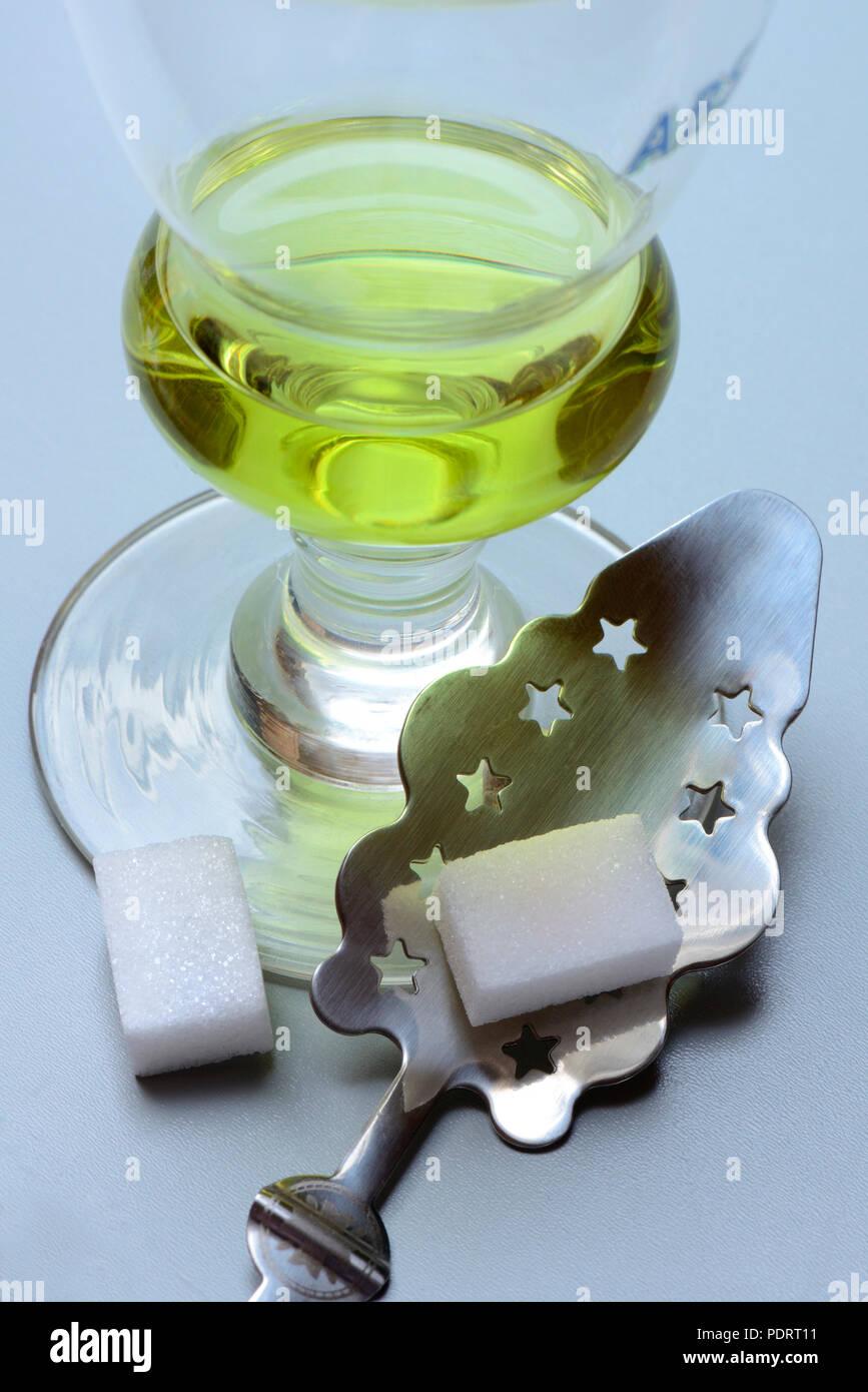 Glas Absinth mit Absinthloeffel und Wuerfelzucker, Gruene Fee - Stock Image